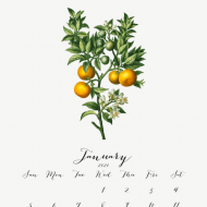 Free Printable Calendar 2020 – Botanical Design