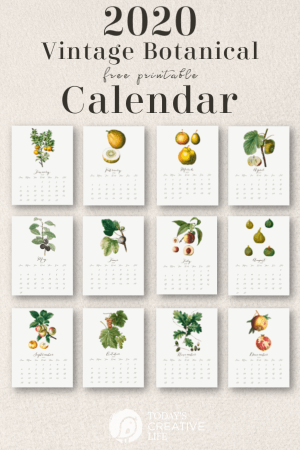 Photo Collage of monthly calendars with botanical design
