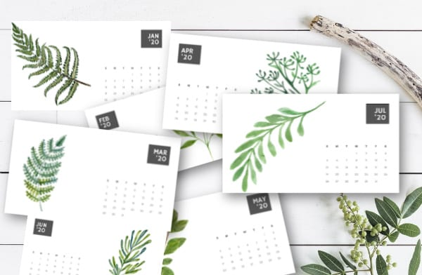 fern calendars on a table