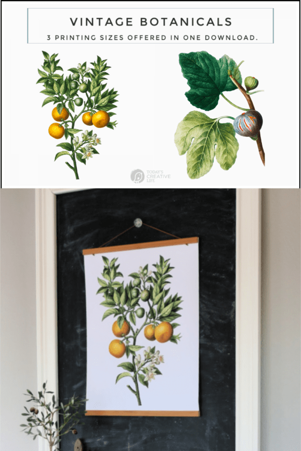 Photo Collage of botanical printable posters