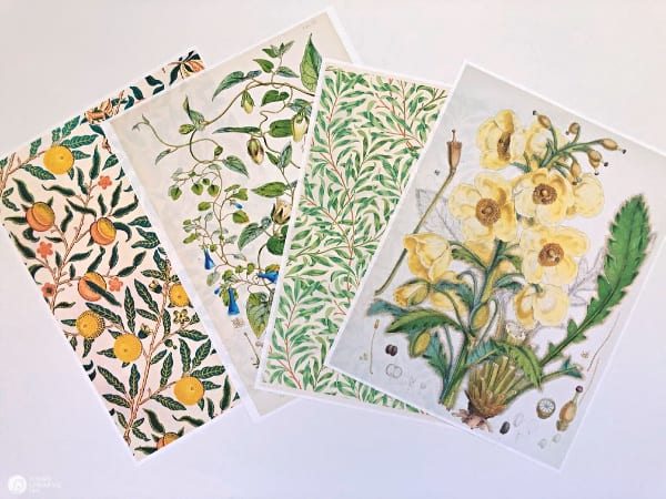 printer paper with botanical patterns