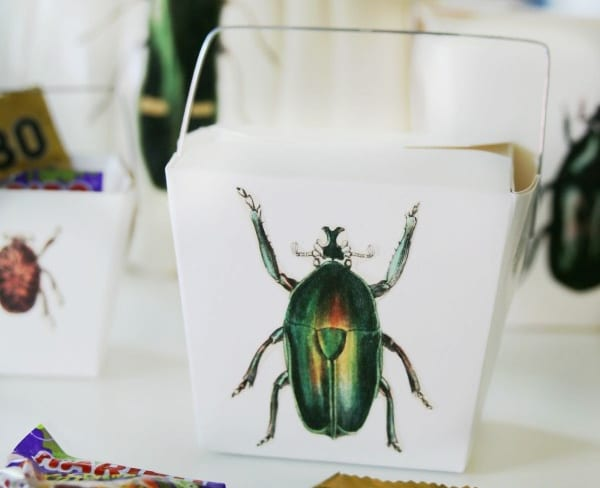 takeout boxes with decoupaged bugs for Halloween