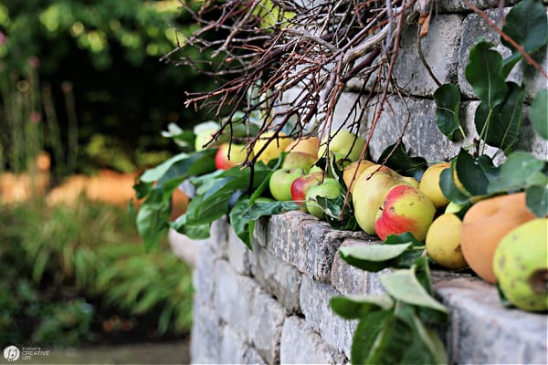 Apples lined up on an outdoor fireplace mantel.