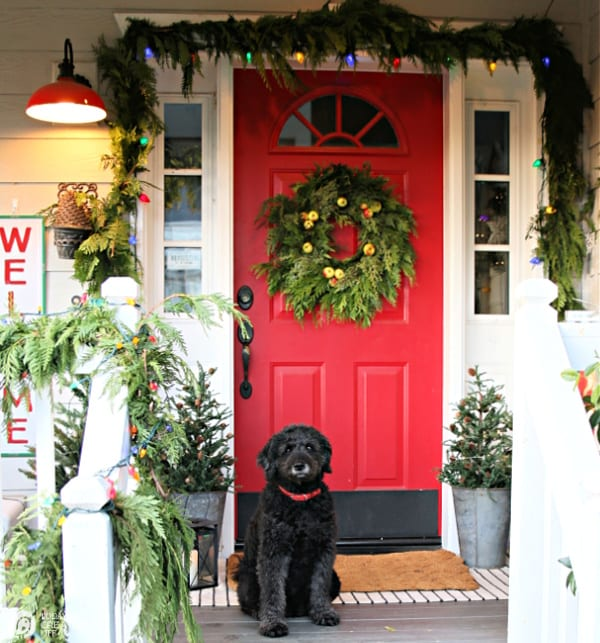 Christmas Porch Decorating Ideas | Red door with green garland, lights and a black dog sitting by the door.