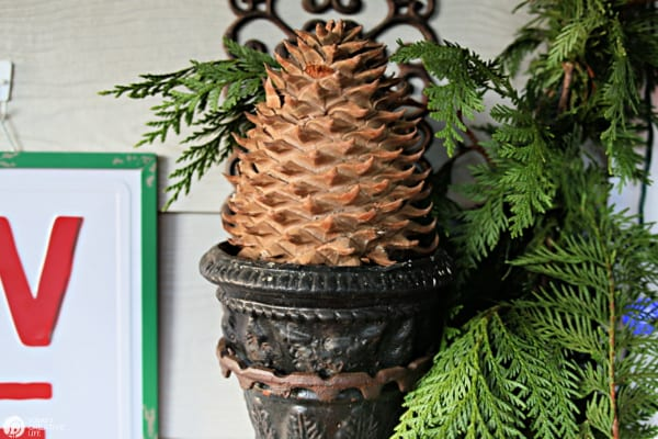 Large pinecone in a planter for front porch decorating.